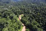 Borneo river -- sabah_aerial_1843