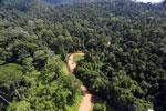 Borneo river -- sabah_aerial_1844