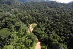 Borneo river -- sabah_aerial_1845