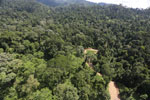 Borneo river -- sabah_aerial_1847