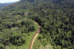 Borneo river -- sabah_aerial_1854