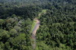 Borneo river -- sabah_aerial_1863