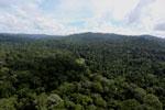 Borneo river -- sabah_aerial_1866
