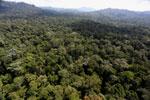 Borneo rainforest -- sabah_aerial_1880