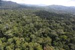 Borneo rainforest -- sabah_aerial_1882