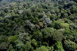 Borneo rainforest -- sabah_aerial_1889