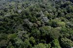 Borneo rainforest -- sabah_aerial_1890