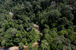 Borneo river -- sabah_aerial_1896