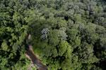 Imbak Canyon -- sabah_aerial_1945