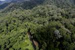 Imbak Canyon -- sabah_aerial_1947