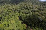 Imbak Canyon -- sabah_aerial_1949