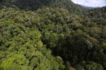 Imbak Canyon -- sabah_aerial_1952