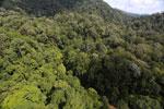 Imbak Canyon -- sabah_aerial_1953
