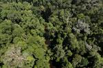 Imbak Canyon -- sabah_aerial_1976