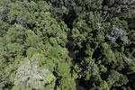 Imbak Canyon -- sabah_aerial_1977