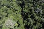Imbak Canyon -- sabah_aerial_1978