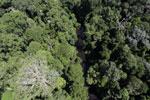 Imbak Canyon -- sabah_aerial_1979