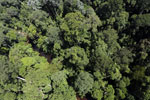 Imbak Canyon -- sabah_aerial_1984