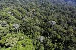 Imbak Canyon -- sabah_aerial_1992