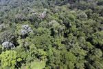 Imbak Canyon -- sabah_aerial_1997