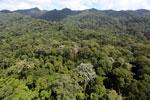 Imbak Canyon -- sabah_aerial_2003