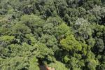 Imbak Canyon -- sabah_aerial_2004
