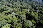 Imbak Canyon -- sabah_aerial_2007
