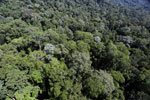 Imbak Canyon -- sabah_aerial_2008