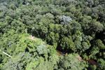 Imbak Canyon -- sabah_aerial_2013