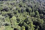 Imbak Canyon -- sabah_aerial_2016