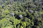 Imbak Canyon -- sabah_aerial_2018
