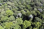 Imbak Canyon -- sabah_aerial_2020
