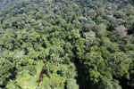 Imbak Canyon -- sabah_aerial_2021