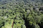 Imbak Canyon -- sabah_aerial_2022