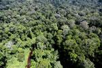 Imbak Canyon -- sabah_aerial_2023