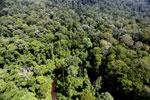 Imbak Canyon -- sabah_aerial_2024