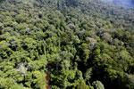 Imbak Canyon -- sabah_aerial_2026
