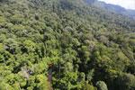 Imbak Canyon -- sabah_aerial_2027