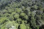 Imbak Canyon -- sabah_aerial_2028