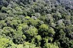 Imbak Canyon -- sabah_aerial_2029