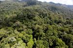 Imbak Canyon -- sabah_aerial_2030