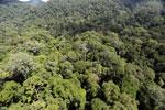 Imbak Canyon -- sabah_aerial_2033