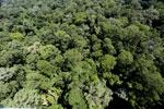 Imbak Canyon -- sabah_aerial_2035