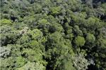 Imbak Canyon -- sabah_aerial_2036