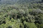 Imbak Canyon -- sabah_aerial_2038