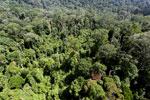 Imbak Canyon -- sabah_aerial_2040