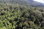 Imbak Canyon -- sabah_aerial_2042