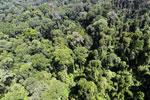 Imbak Canyon -- sabah_aerial_2043