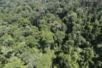 Imbak Canyon -- sabah_aerial_2044