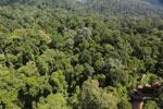 Imbak Canyon -- sabah_aerial_2046